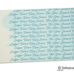 Ivory and Sky Blue Money Envelope with Sikh Gurbani