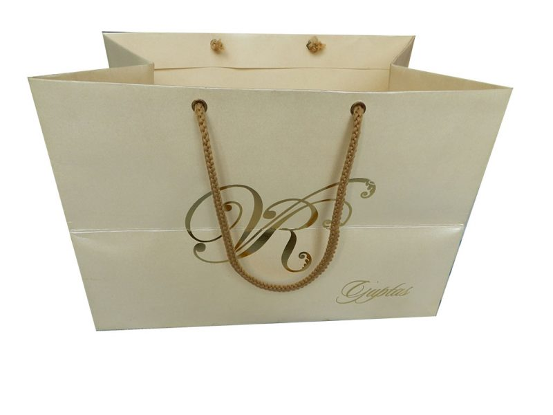Front view of Ivory Gift Bag in Pearl Finish