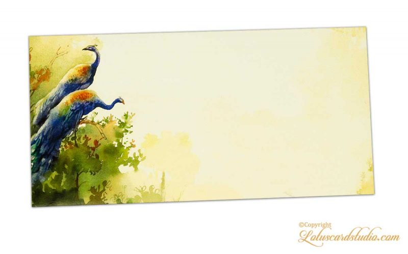 Gift Envelope with Colorful Peacocks