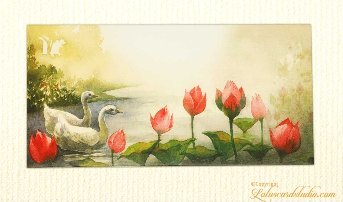 Gift Envelope with Nature Scene Beauty and Swans