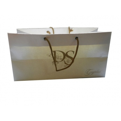 Pearl Finish White Gift Bag - Image3